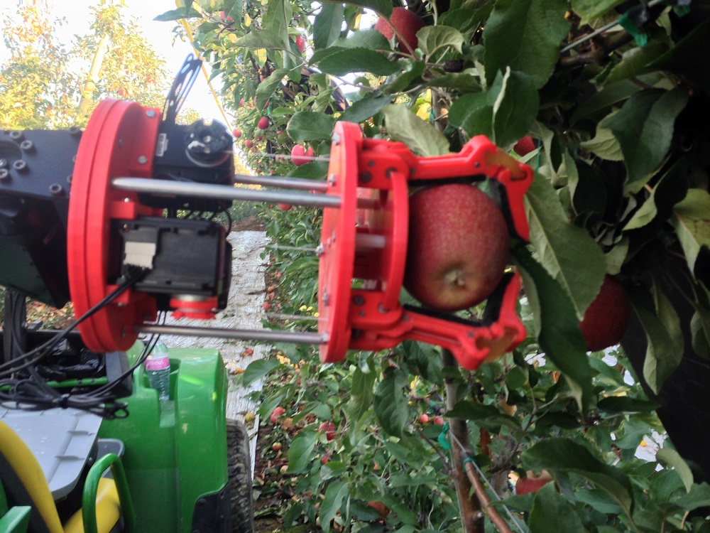 Image Courtesy : The Packer - Robotic fruit pickers promise labor saving