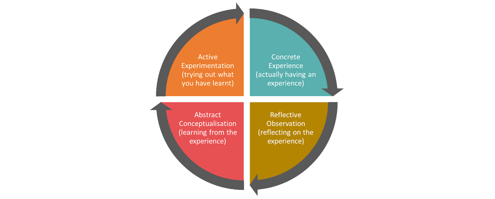 David Kolb's The Experiential Learning Cycle Model
