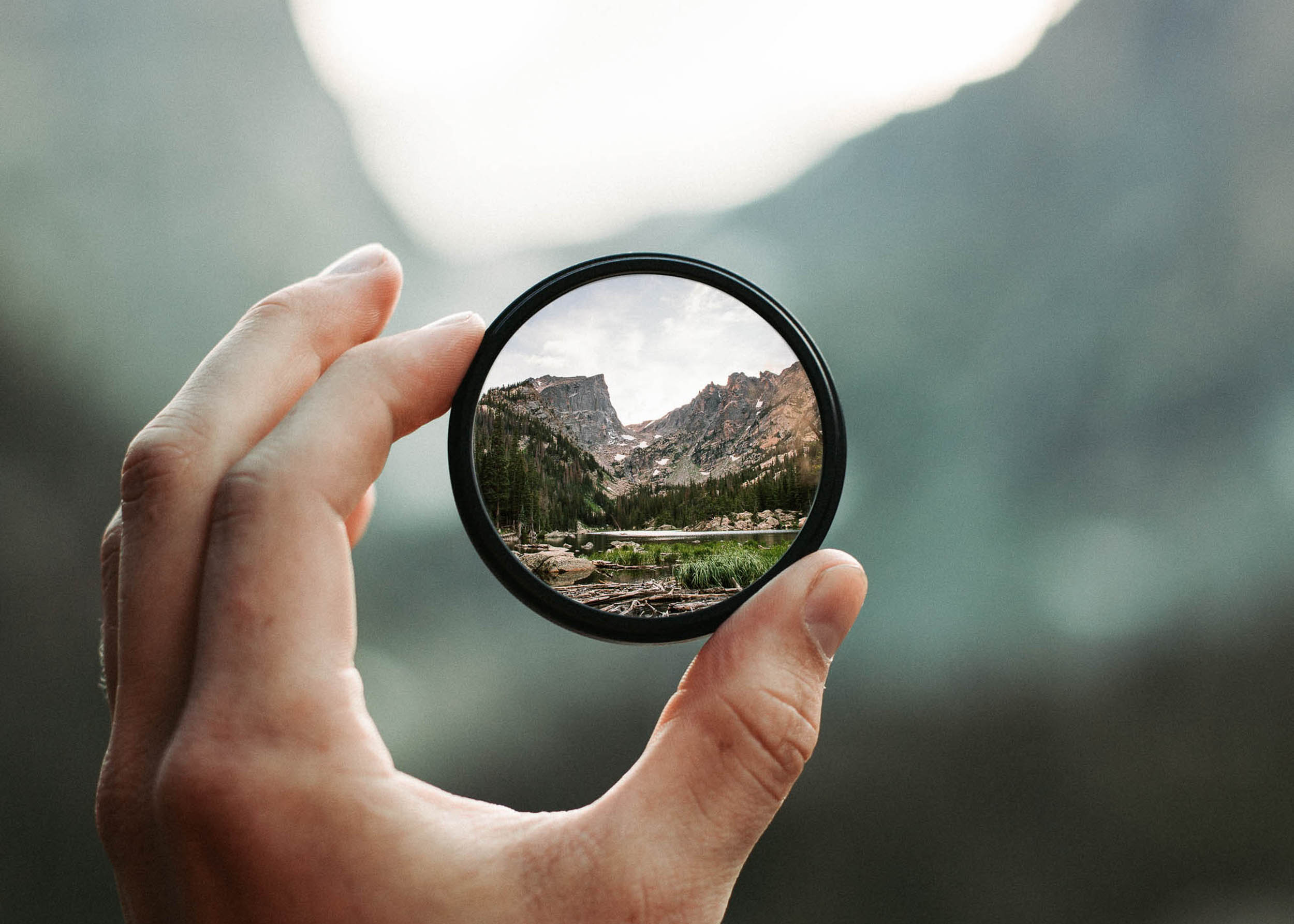 Why is curiosity important in professional and personal development