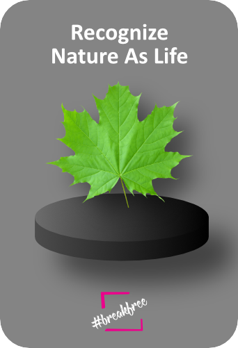 Recognize Nature As Life - Declaration of Interdependence graphic