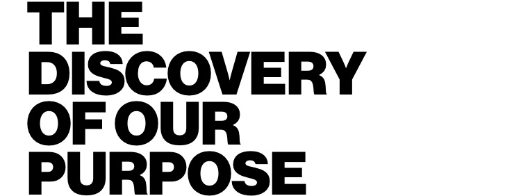 The discovery of our purpose