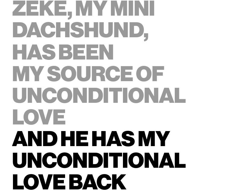 Zeke, my mini dachshund, has been my source of unconditional love and he has my unconditional love back