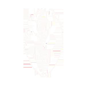 Icon of iron buddha loose-leaf tea
