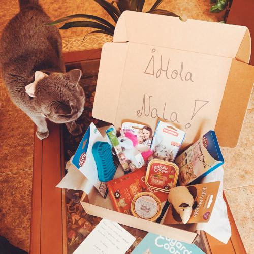 cajas-mensuales-gatos
