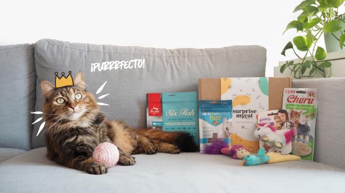 caja-sorpresa-gato