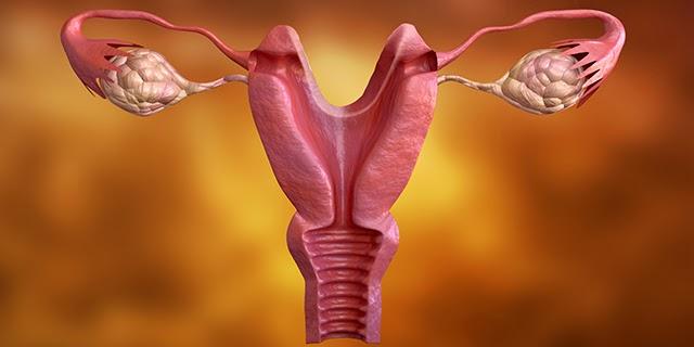 endometriosis meaning