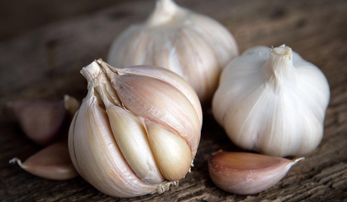 immunity boosting foods indian