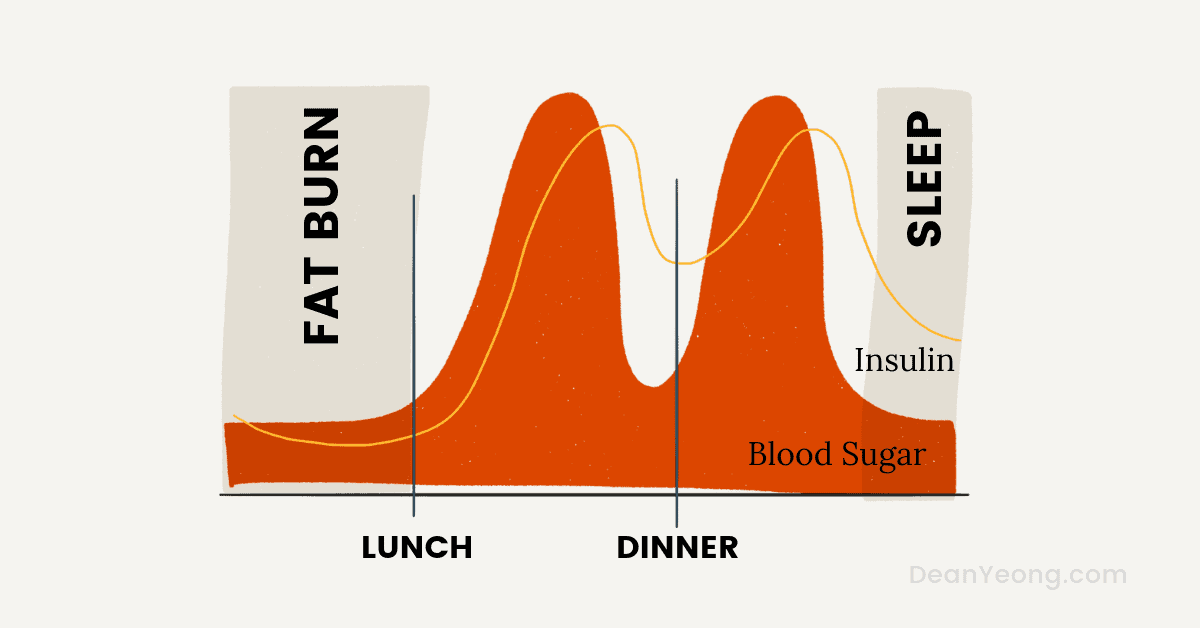 How intermittent fasting works - the fasted state