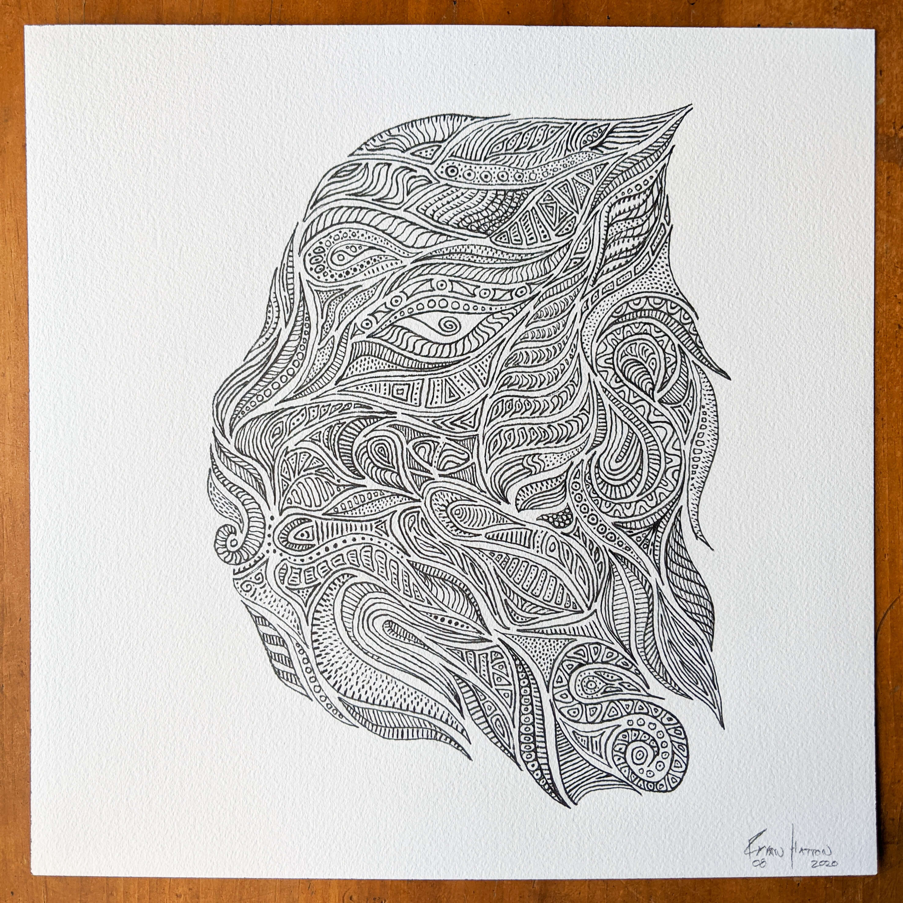 abstract drawing of a head