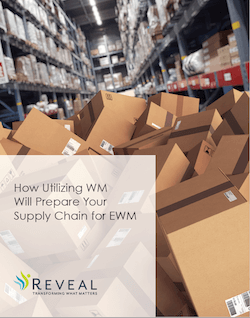 Utilizing Warehouse Management Will Prepare Your Supply Chain for EWM