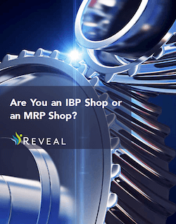 Are You an IBP Shop or an MRP Shop?
