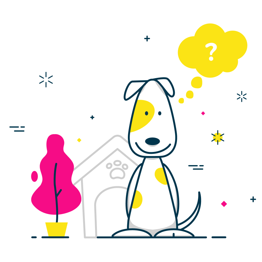 FAQ frequently asked questions dog
