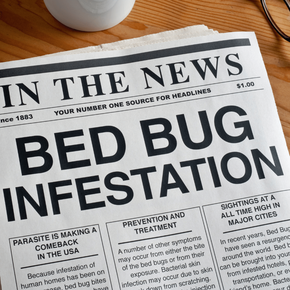 Bed Bugs - Ancient Times To Modern Day
