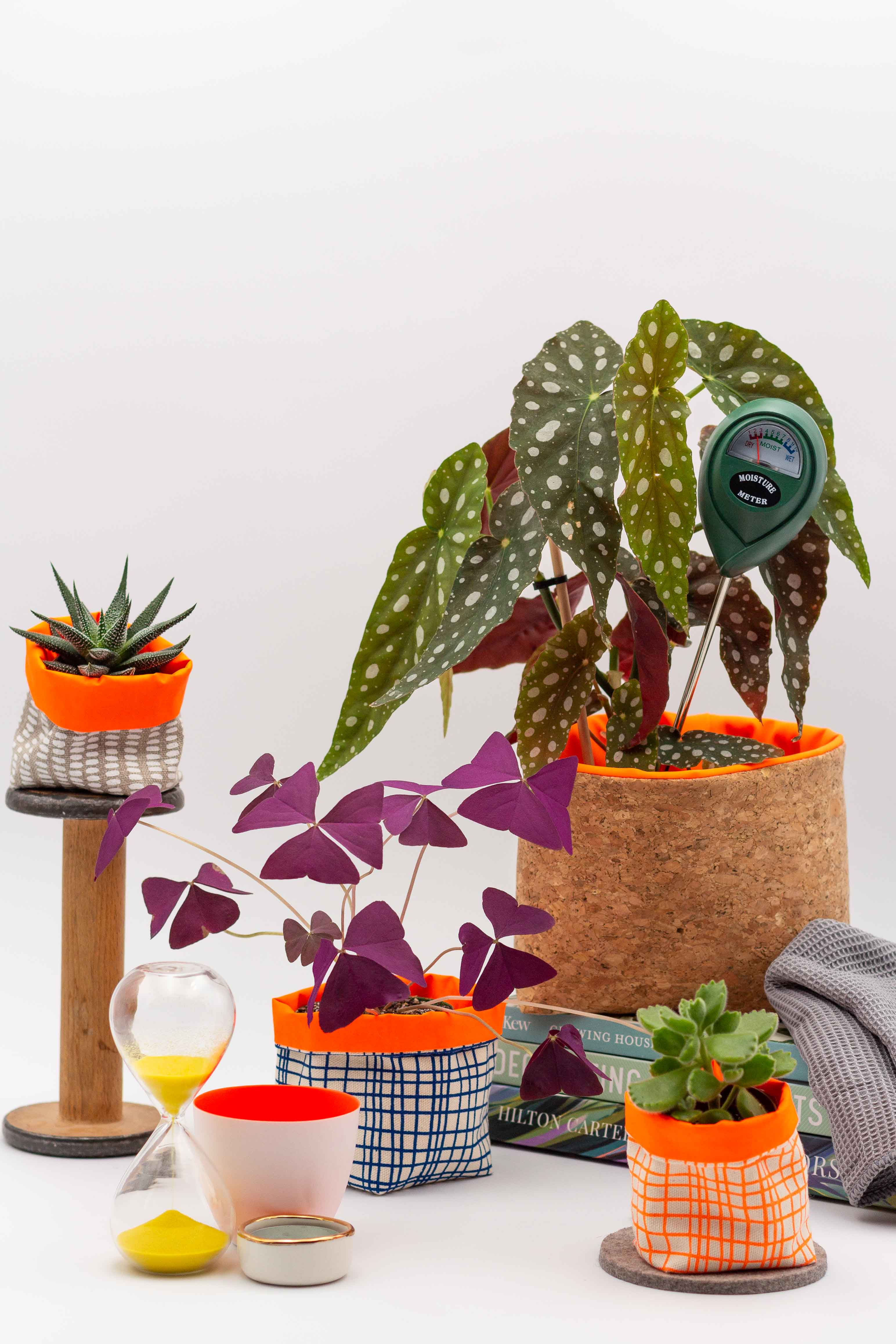 A series of plant accessories that would be perfect for someone who is more into houseplants. Larger fabric pots are show with easy to look after plants.