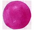 Purple Paint Bullet Point