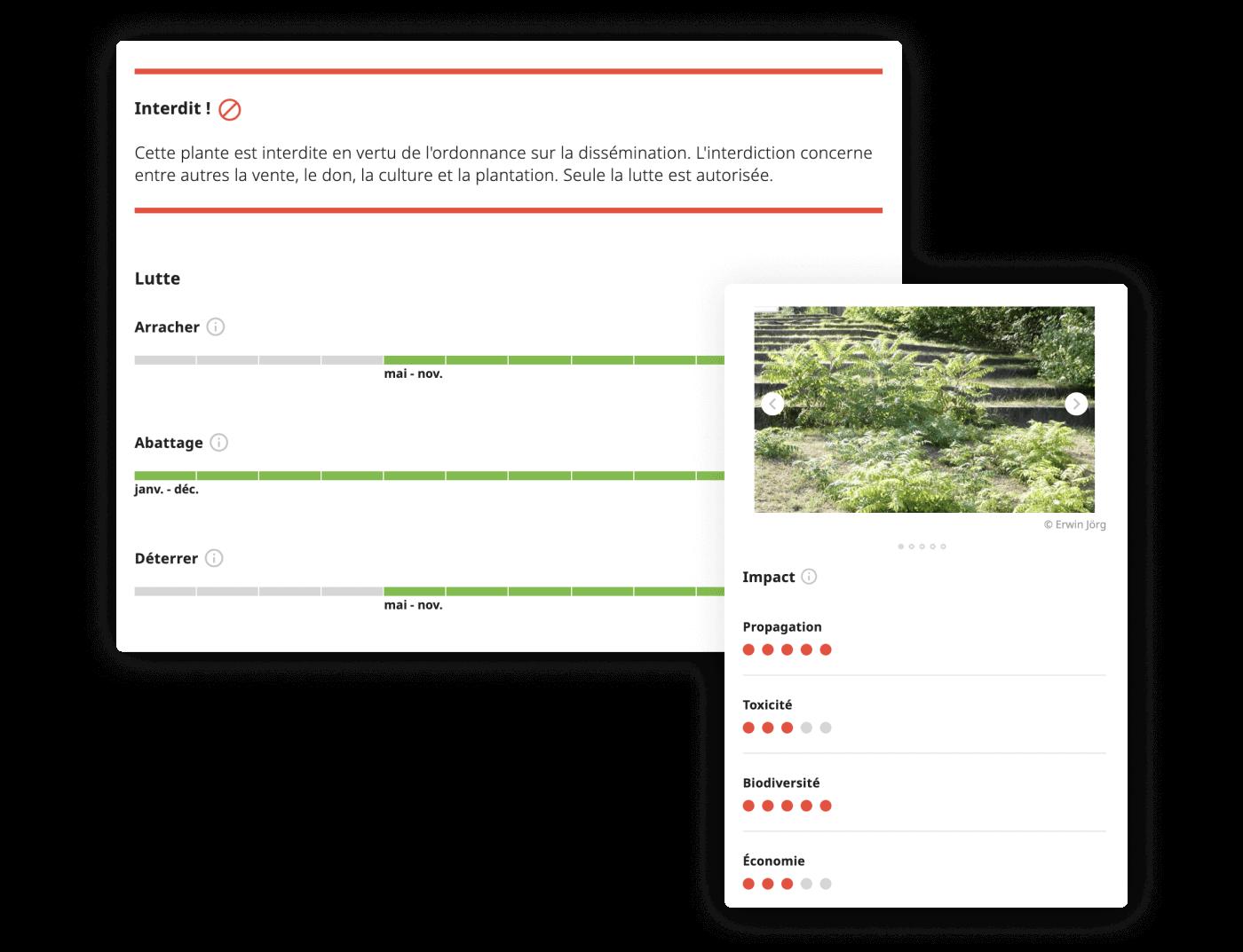 Neophyte Checker sur natel