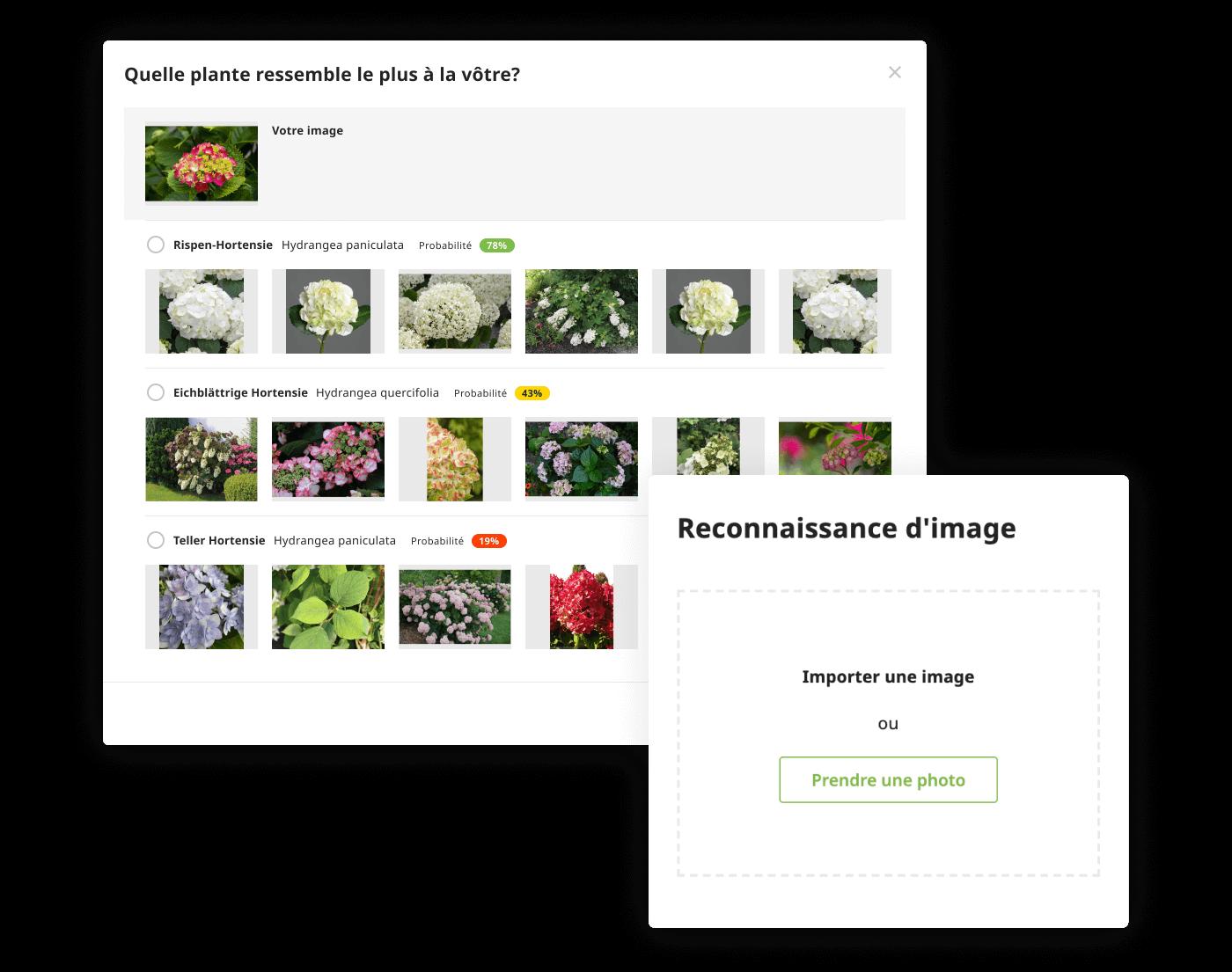 Reconnaitre des plantes par photo