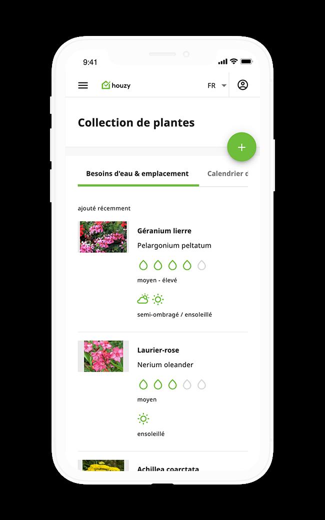 Résultat Guide des plantes Houzy