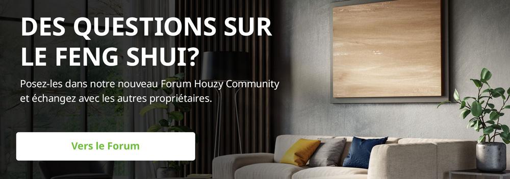 Posez vos questions sur le Feng Shui dans le Forum Houzy
