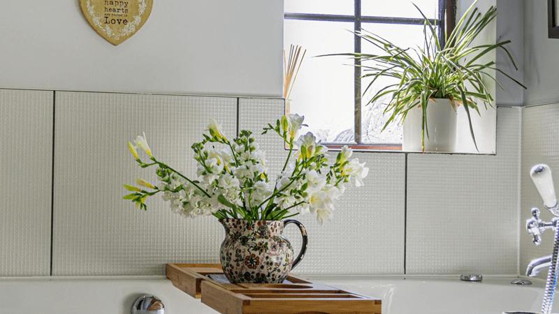 Les plantes d'intérieur dans la salle de bains sont généralement très faciles à entretenir.