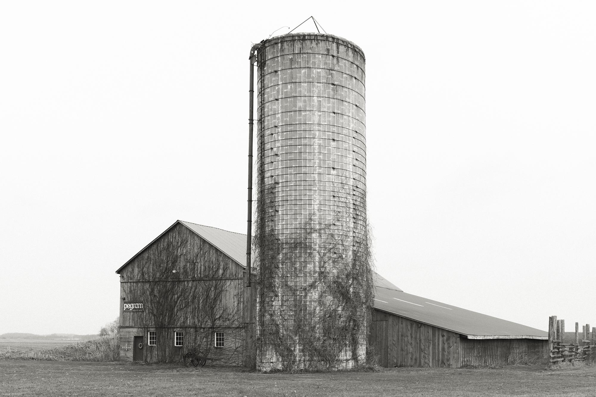 Photograph from the portfolio of David Brandy