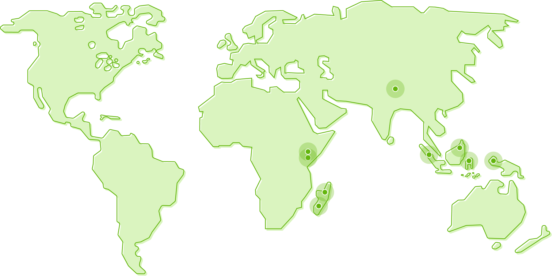 A map of the world where we plant trees.