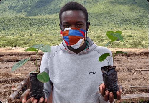 Man holding 2 tree saplings