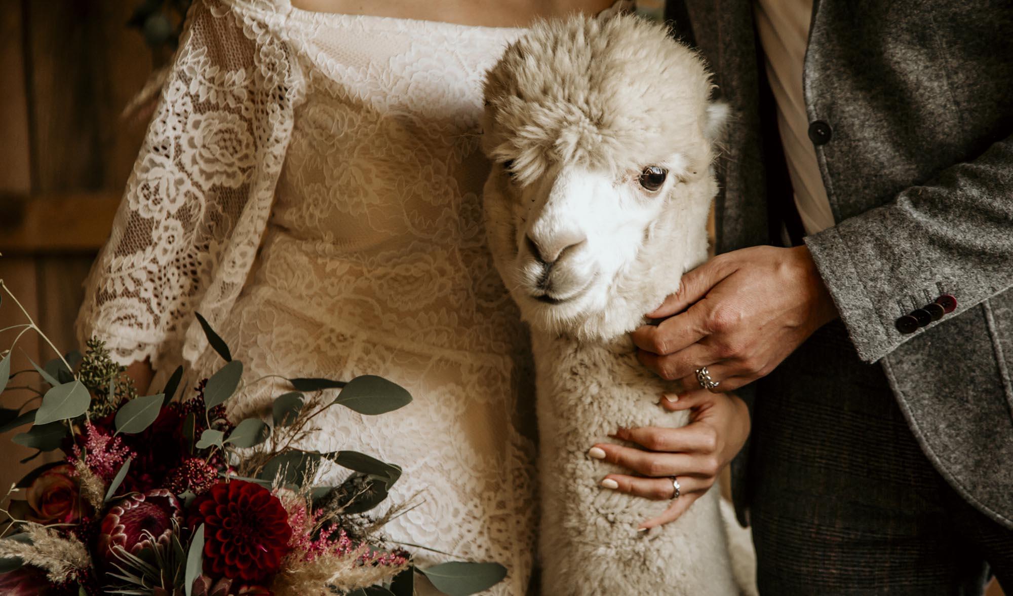 Trauringe | Hochzeit Vorarlberg