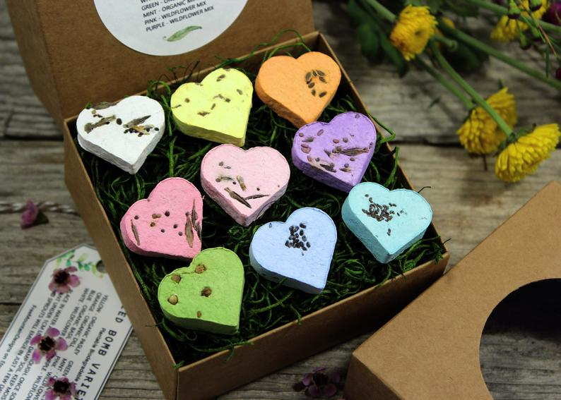 READY TO SHIP Wildflower And Herb Seed Bomb Variety Gift Box image 0