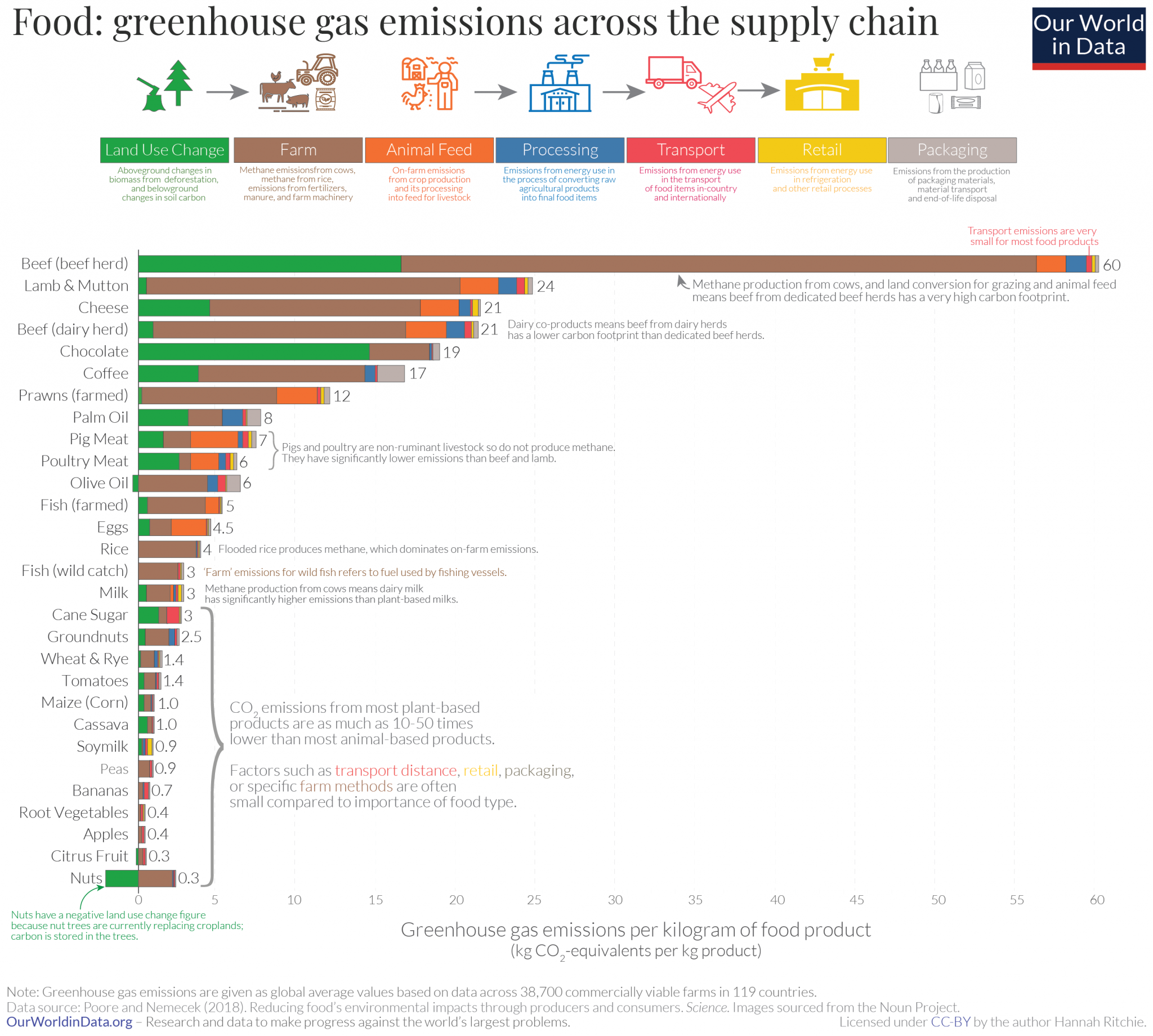 beef environmental impacts