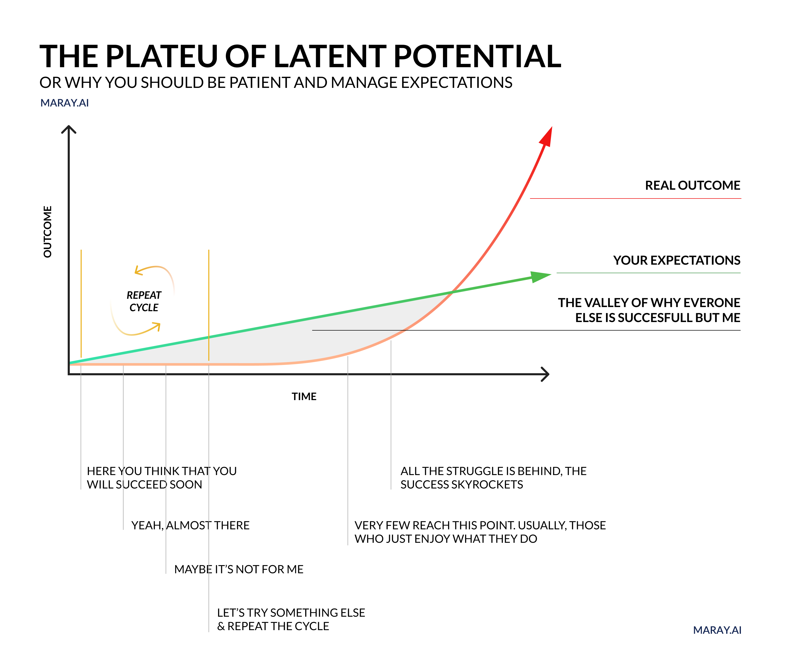 The plateau of latent potential. Disappointment valley is often the roadblock for progress.