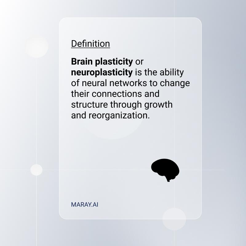 Neuroplasticity definition