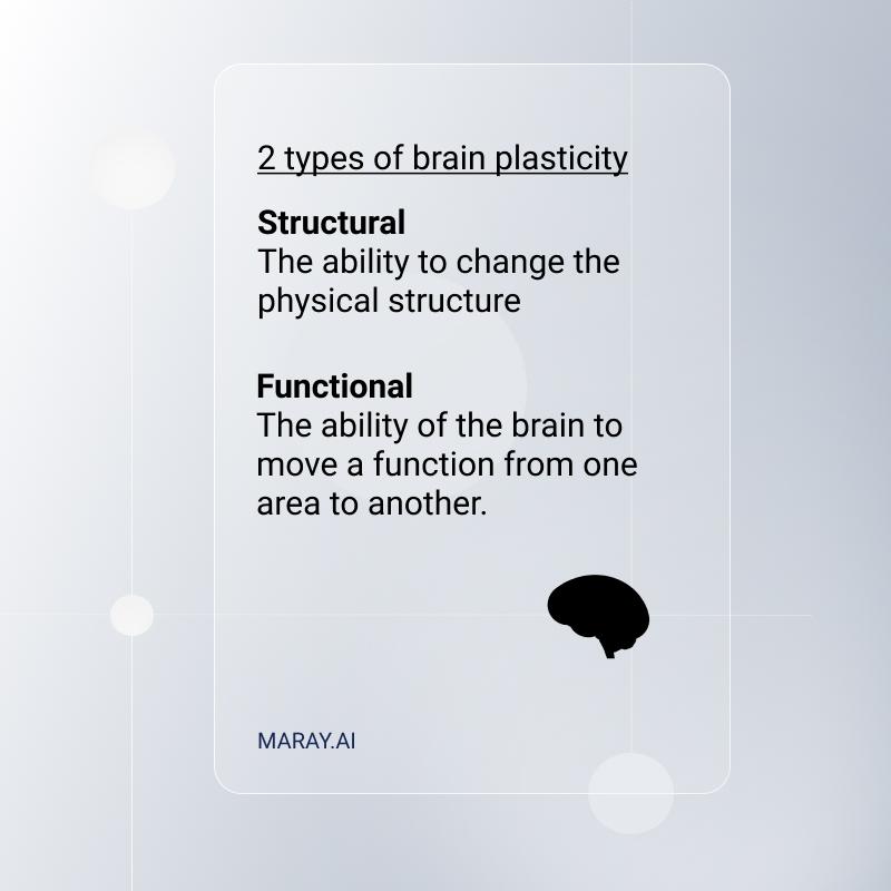 Types of brain plasticity