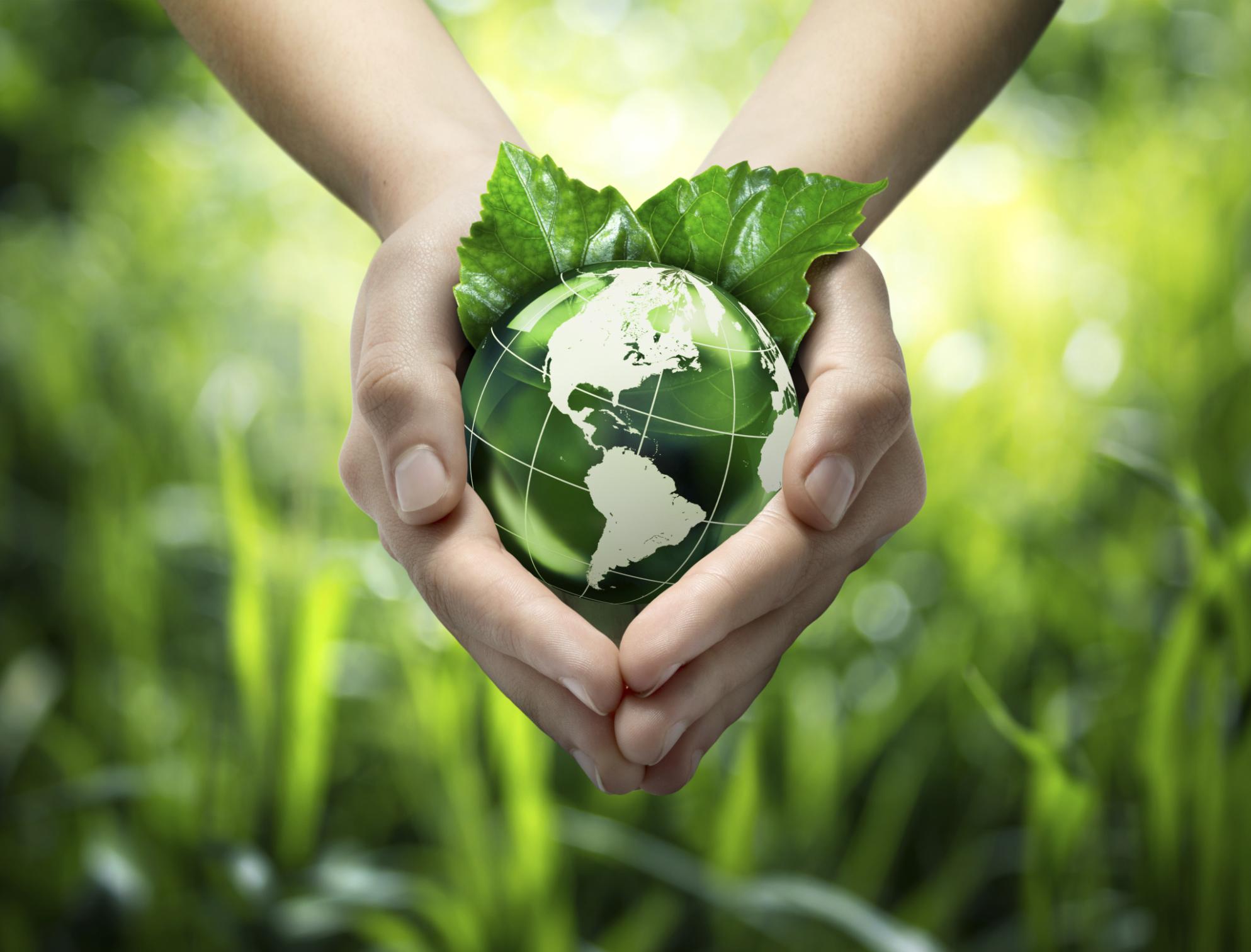 green-sustainability.jpg