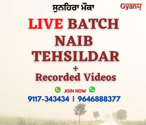 punjab naib tehsildar online course