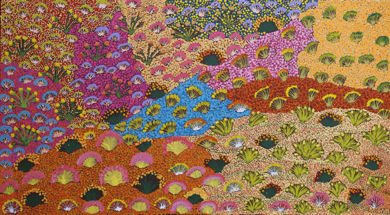 Painting titled My Country and Bush Medicine Plants by Julieanne Ngwarraye Morton showing landscape changes during the seasons in the year