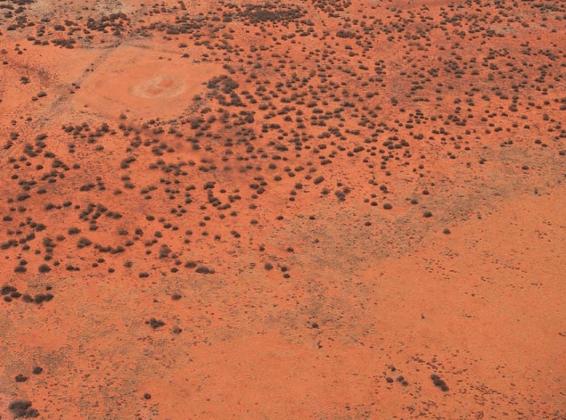 A photo of the desert in Central Austrial showing red earth caused by iron oxide accmulation