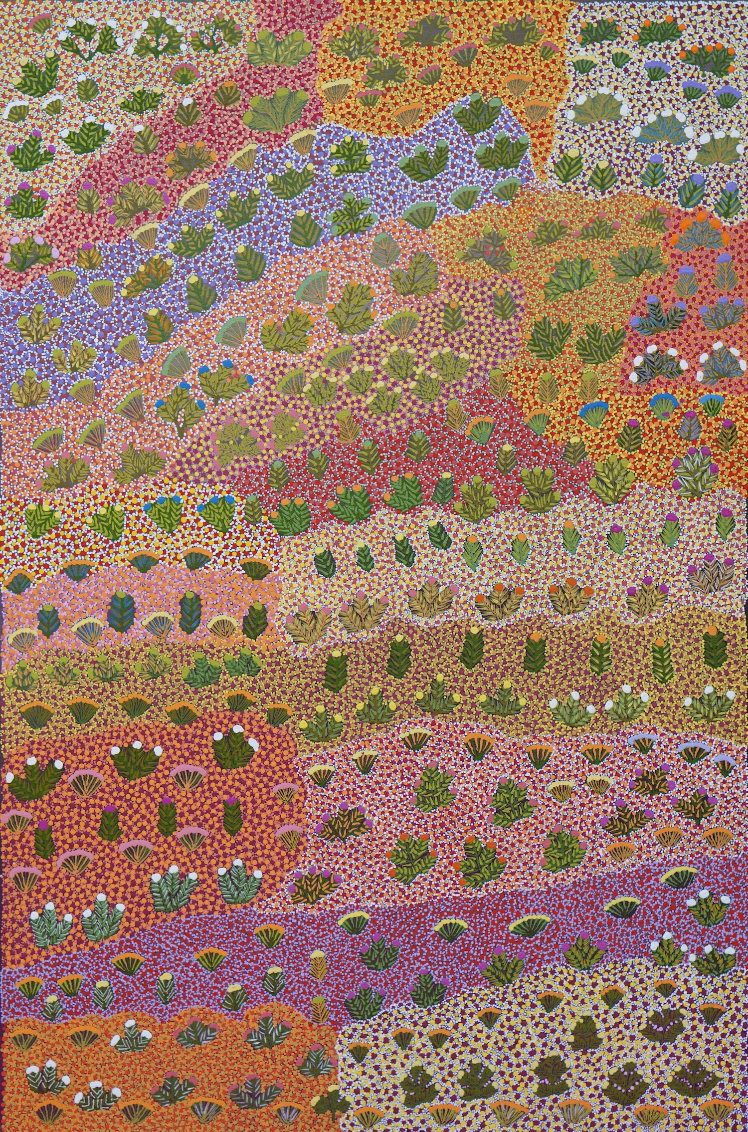 A painting titled My Mothers Country by Daisy Kemarre Holmes of Kngwarraye country where bush medicine and traditional bush foods are found.