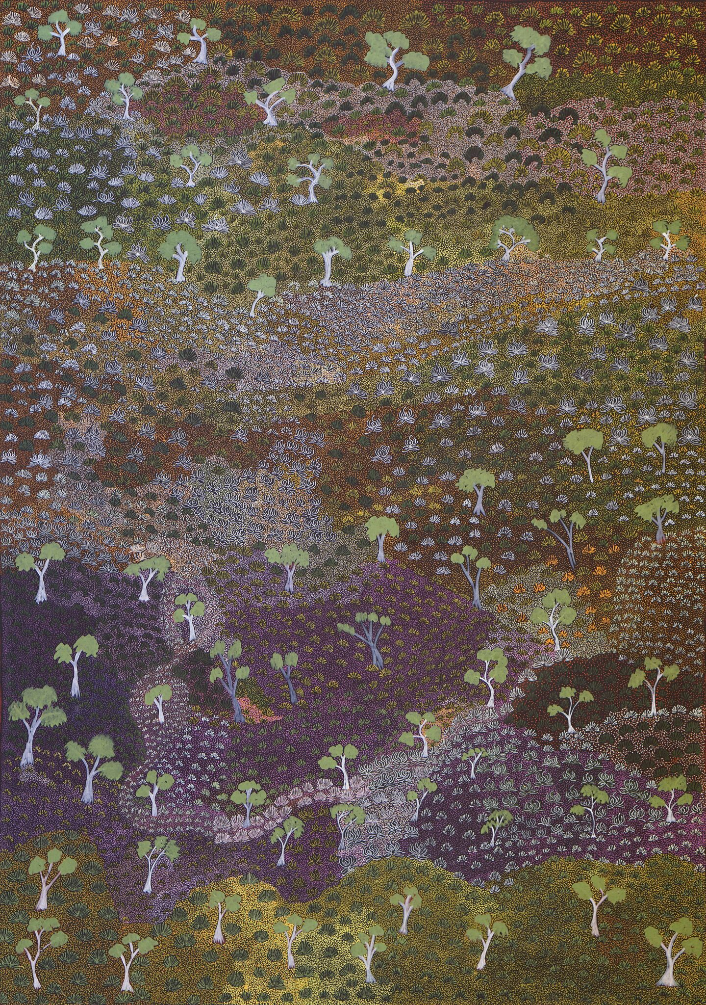 Painting titled Title of Piece done by Colleen depecting her Grandfathers country and the bush medicines and plants that grow there