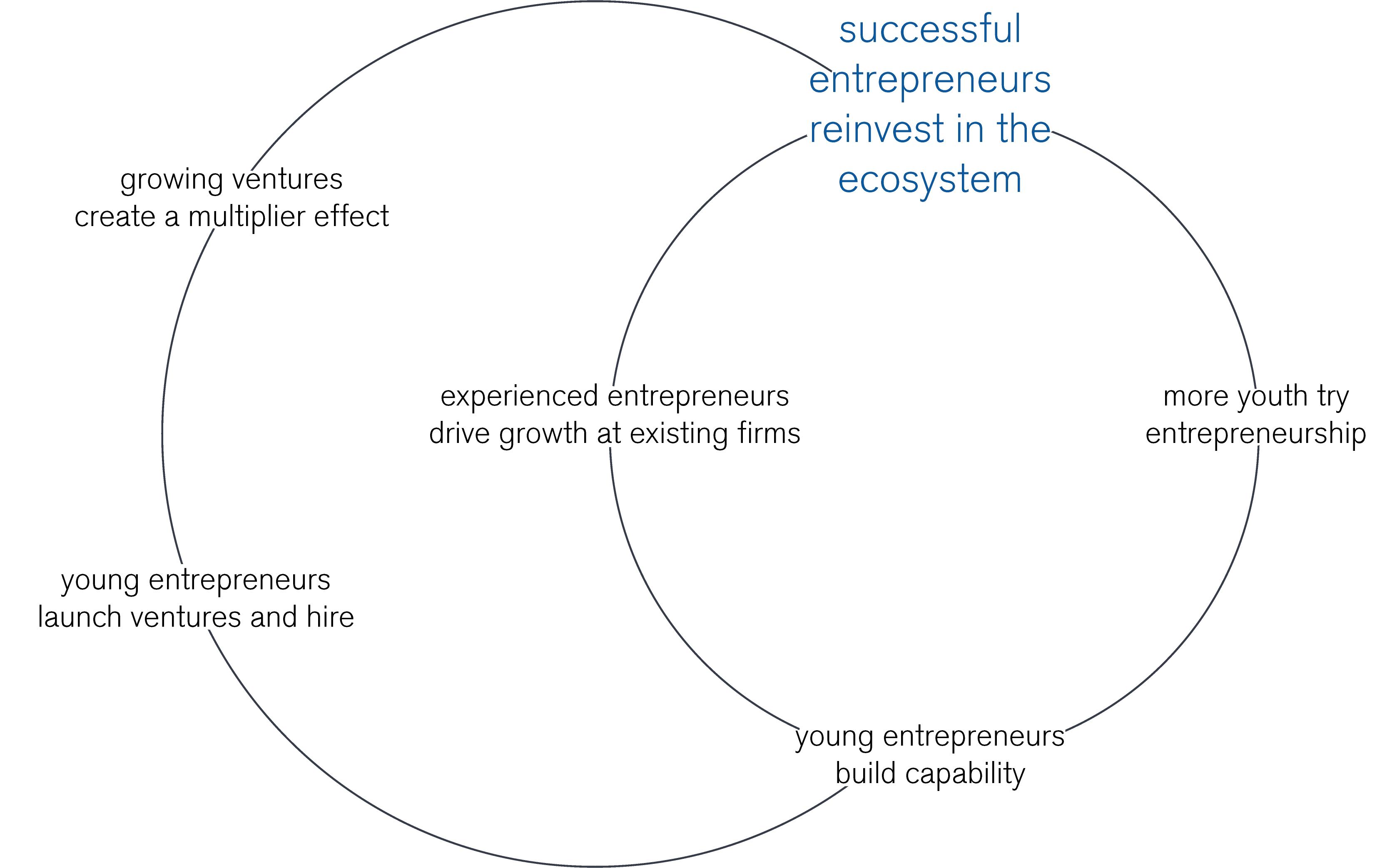 entrepreneurial capability + job creation