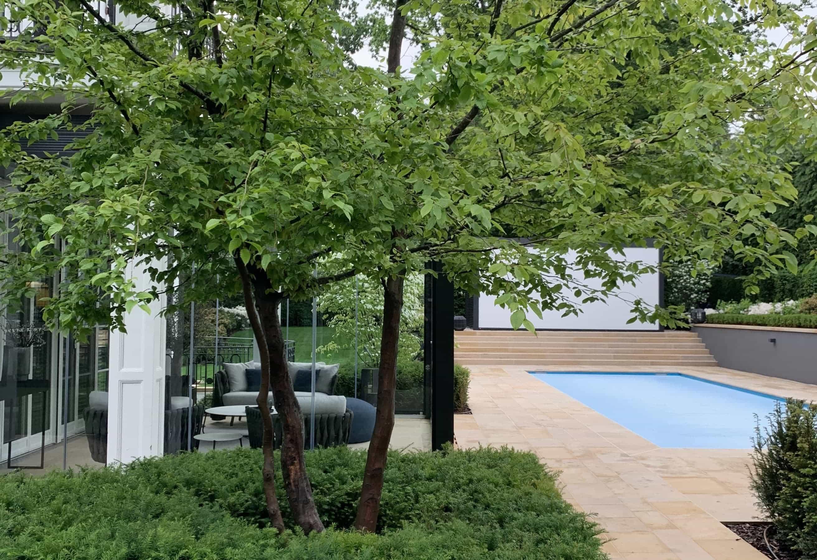 Projekt ogrodu Der Garten - Studio Organic