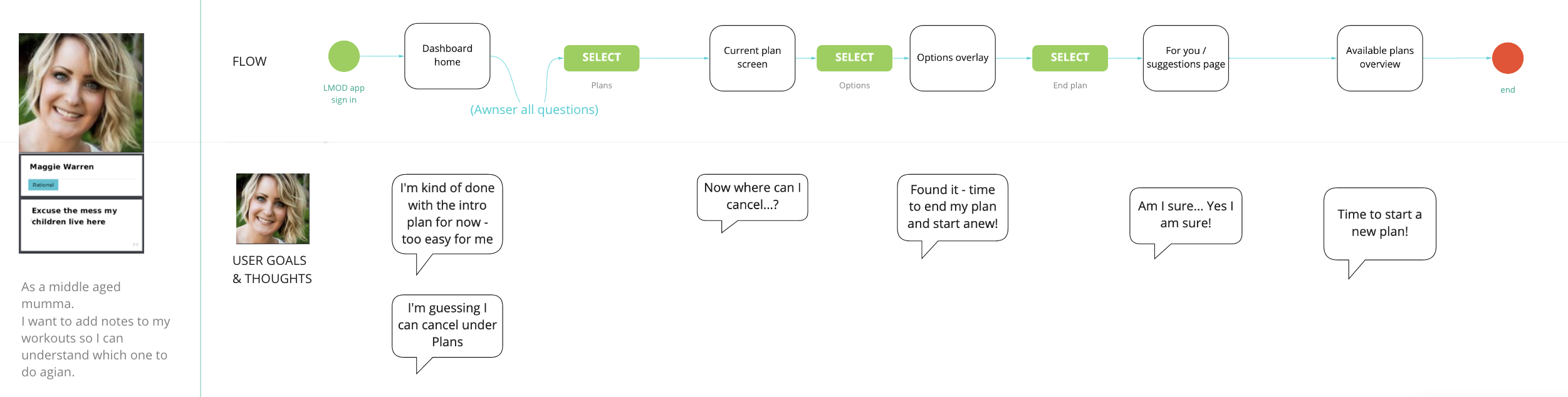 User flow with persona