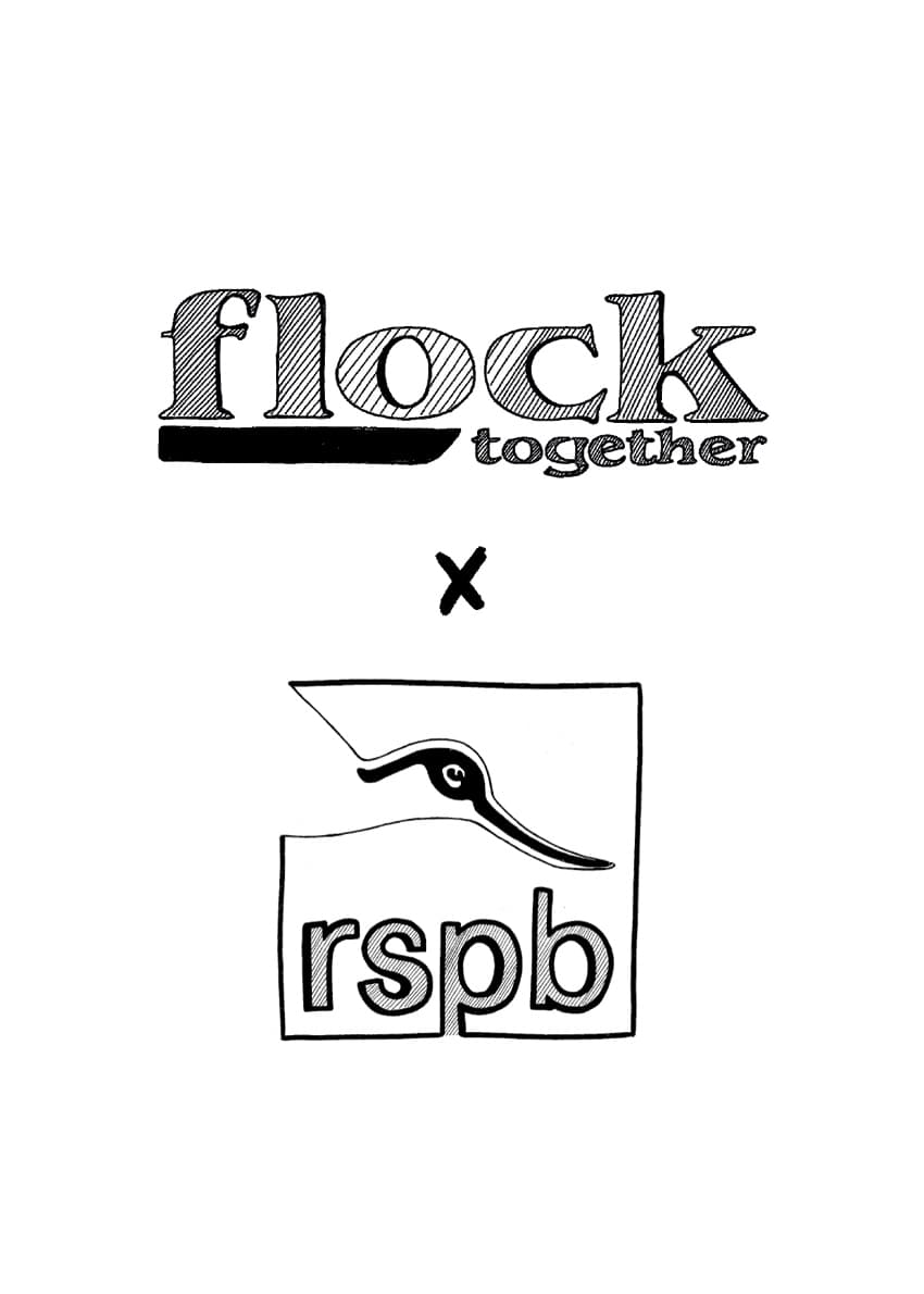 Flock Together and RSPB collaborate on a special campaign, Bird Names for Birds, which aims to teach the full history behind eponymous birds names.