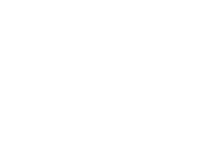 Netball New South Wales