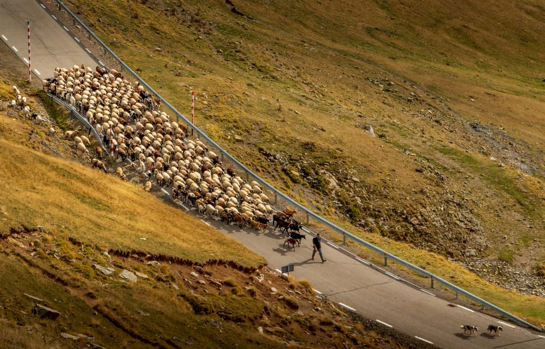 Local traffic on the roads in the Spanish Pyrenees