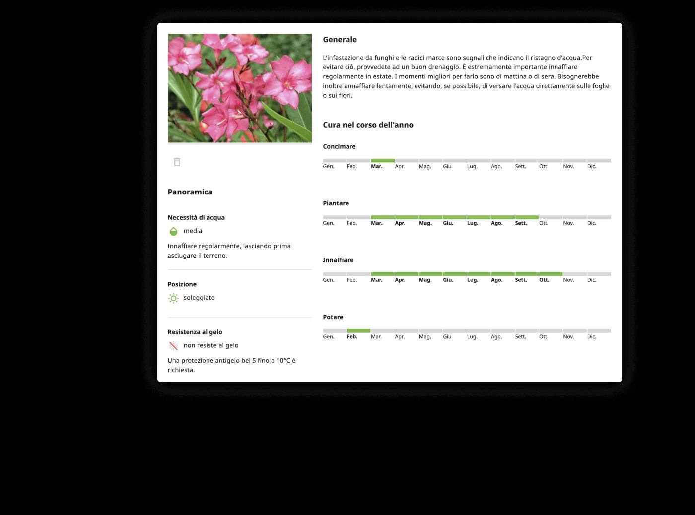 Tipps und Tricks für Ihre Pflanzen