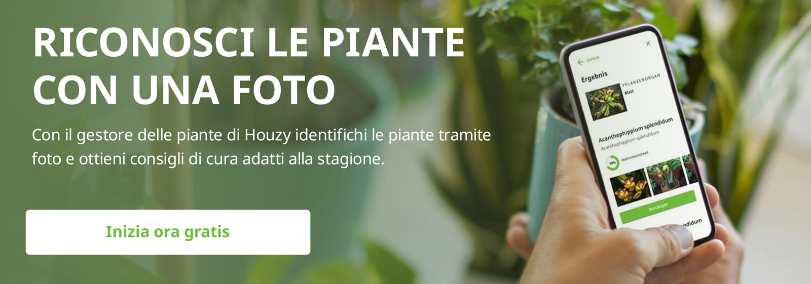 Gestore delle piante: semplice con Houzy