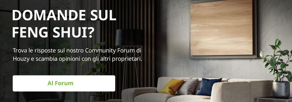 Cosa si pensa del Feng Shui? Accedi alla discussione con gli altri utenti Houzy della nostra community. Il forum, come tutti i servizi di Houzy, è gratuito. Provalo.