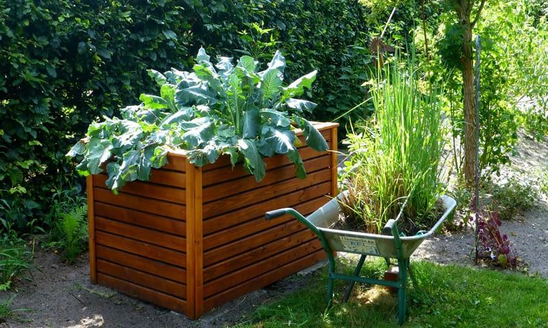 Un'aiuola rialzata di legno in giardino