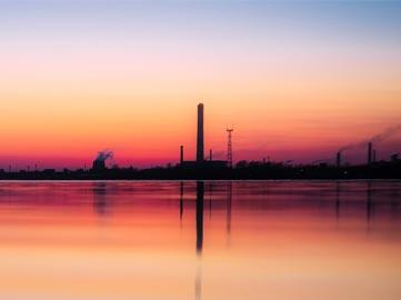 Cómo podemos revertir la contaminación del aire, el mayor riesgo ambiental para nuestra salud